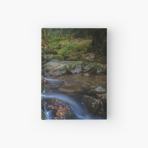 Shaugh Prior & The River Plym Hardcover Journal