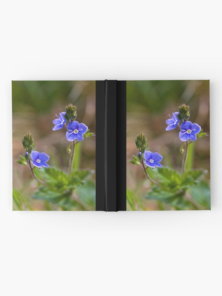 Alternate view of Germander Speedwell (Veronica chamaedrys) Hardcover Journal