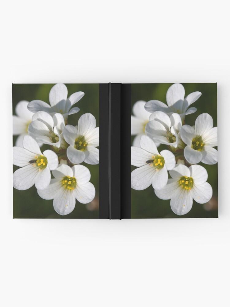 Alternate view of Meadow Saxifrage (Saxifraga granulata)  Hardcover Journal