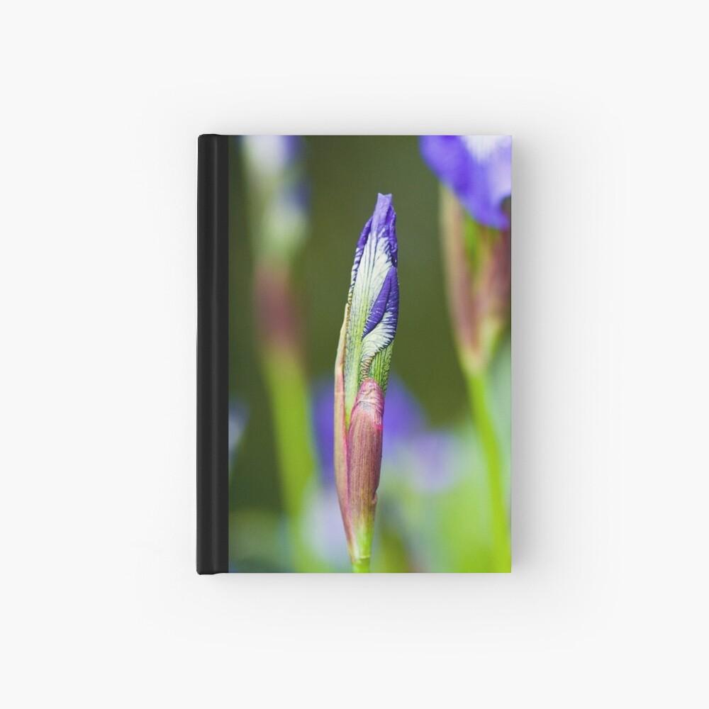 Purple Iris Bud (Iris versicolor) Hardcover Journal