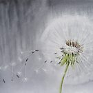 Blown Away by artbyrachel