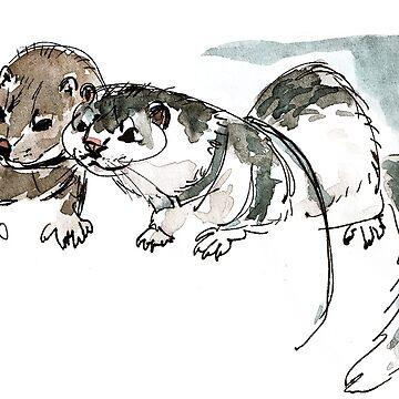 Two American minks de belettelepink