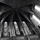 Shrewsbury Abbey  by John Callaway