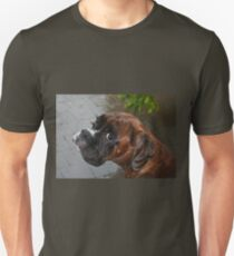 Luthien -Boxer Dogs Series- T-Shirt