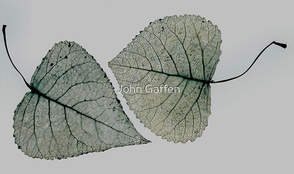 Leaf Lovers by John Gaffen