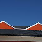 This Roof Inspired Madonna's Conical Bra by David McMahon