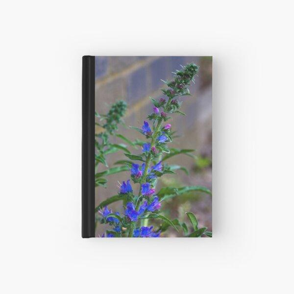Viper's Bugloss (Echium vulgare) Hardcover Journal