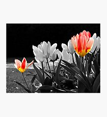 Two-LIps Photographic Print