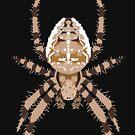 European garden spider – Araneus diadematus by GaffaMondo