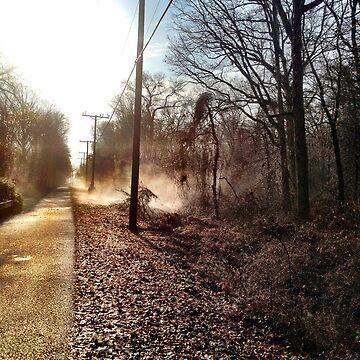 Misty morning on the trail by 8kPzGZjJ20Rj