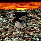 Anothe  Brick In The Wall by Mark Czerwonka