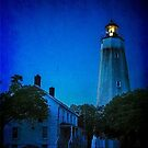 The Sandy Hook Lighthouse at Twilight by Debra Fedchin