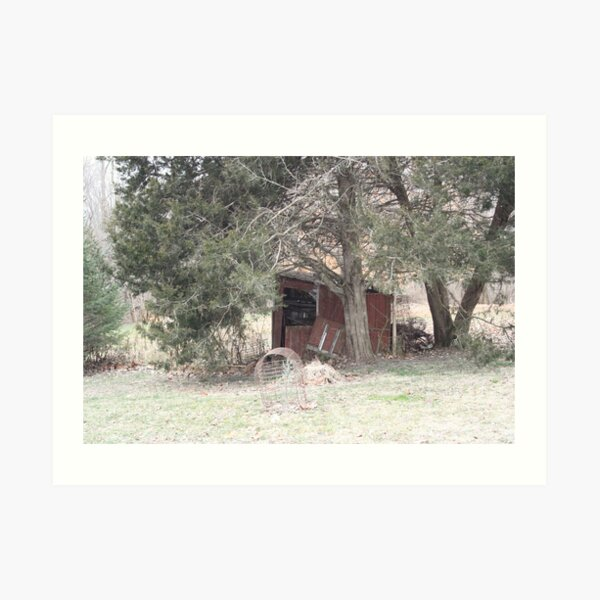 The Lonely Shed Art Print