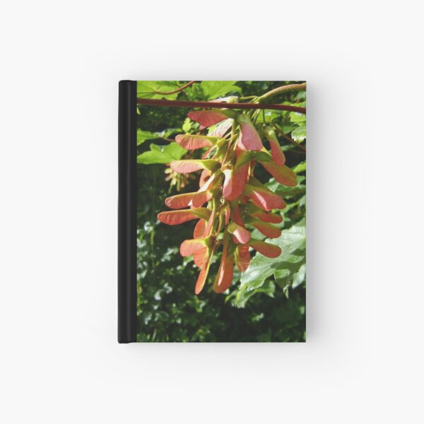 seed cluster Hardcover Journal
