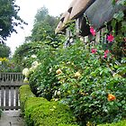 Shottery, Warwickshire by hjaynefoster
