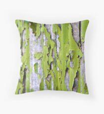 Bamboo Screen Throw Pillow