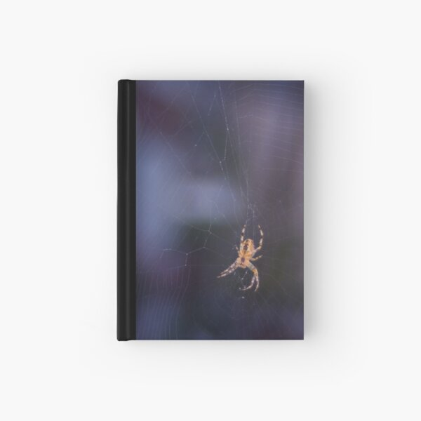 Like a spider in the web Hardcover Journal