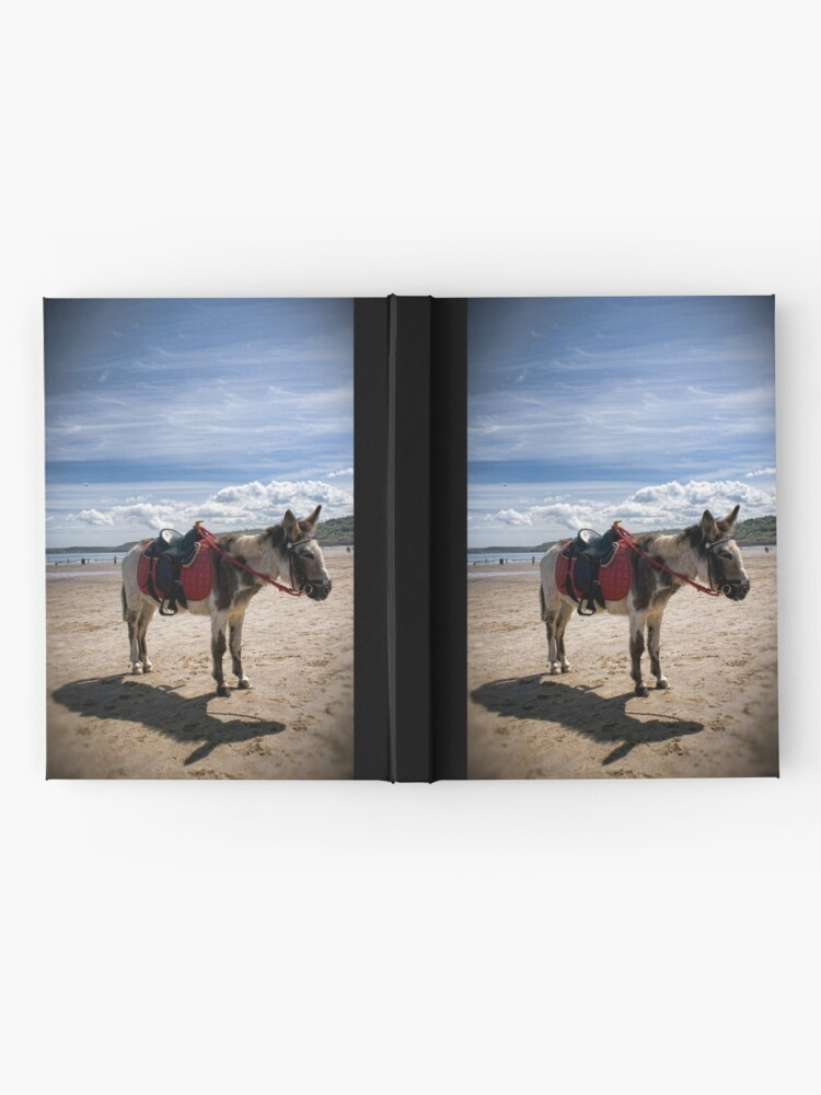 Alternate view of Bess Hardcover Journal