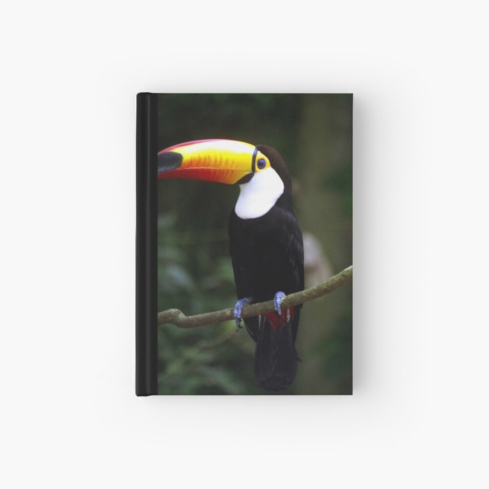 Toucan Hardcover Journal