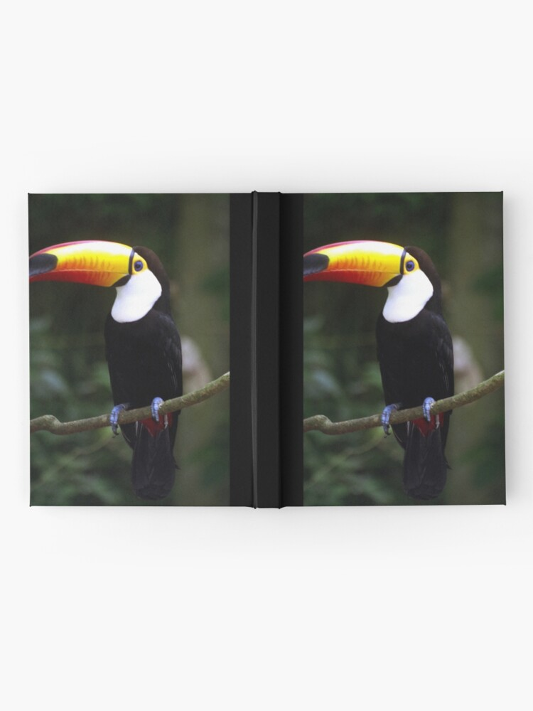 Alternate view of Toucan Hardcover Journal