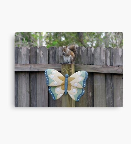 The Squirrel and Butterfly Canvas Print