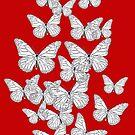Butterflies flying by Lukasz  Czyzewski