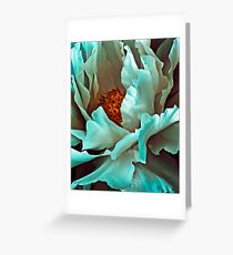 White Peony Petals Greeting Card
