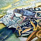 Baby sitting - Frog by scallyart