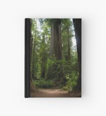 Redwood National Forest Hardcover Journal