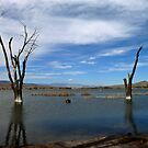 Pahranagat National Wildlife Refuge by gail anderson