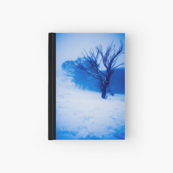 Tree in Ground Cloud (Thinking Outside the Box 101) Hardcover Journal