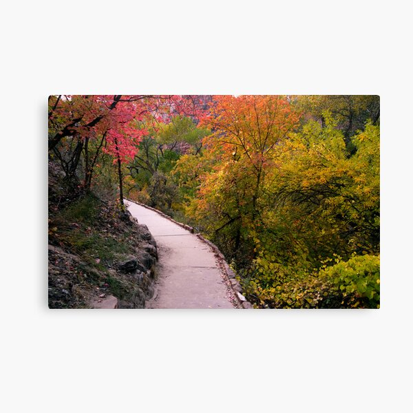 Fall Color on the Trail from Weeping Rock Canvas Print