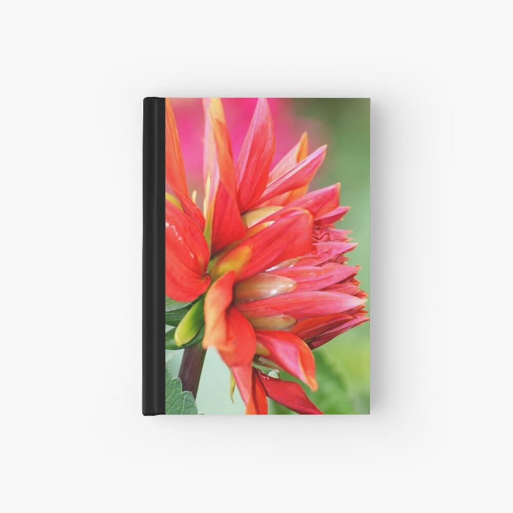 Colourburst Hardcover Journal