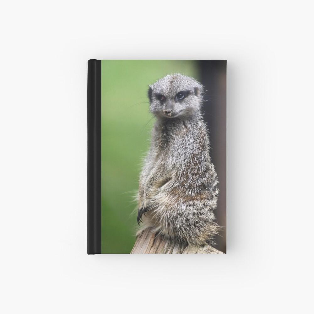 The Wily Meerkat Hardcover Journal