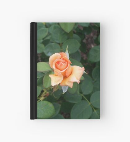 A Rose is a Rose 7 Hardcover Journal