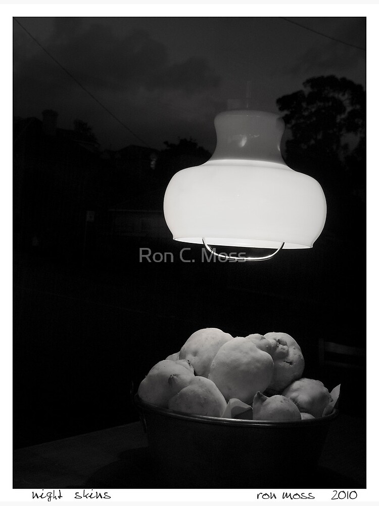 Night Skins by ronmoss