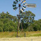 Broken Windmill by Michelle Fluri