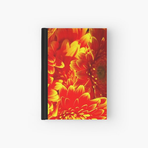 That's A Neon Sign, Right? WRONG! Hardcover Journal