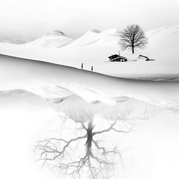 Know Your Roots by stohitro