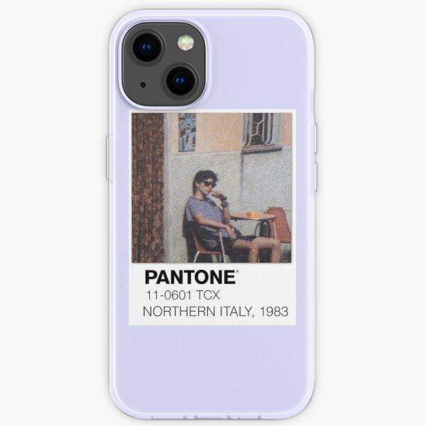 Pantone Nenn mich bei deinem Namen Polaroid iPhone Flexible Hülle