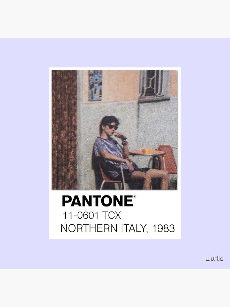 Pantone Call Me By Your Name Polaroid by wurlld