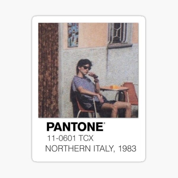 Pantone Call Me By Your Name Polaroid Sticker