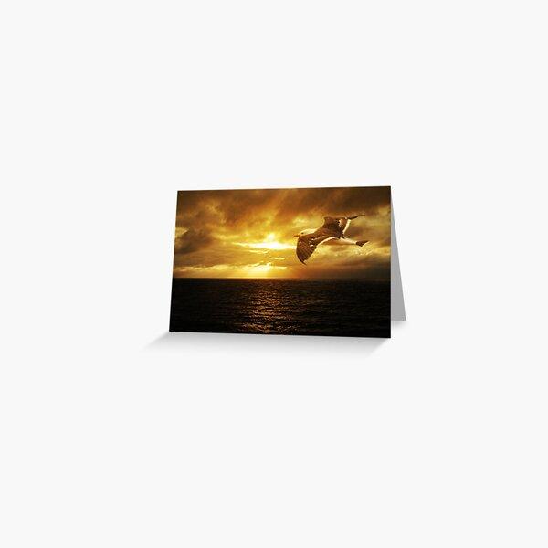 Dawn, Cape Du Couedic. K.I. Greeting Card