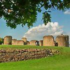 Flint Castle, North Wales, UK by AnnDixon