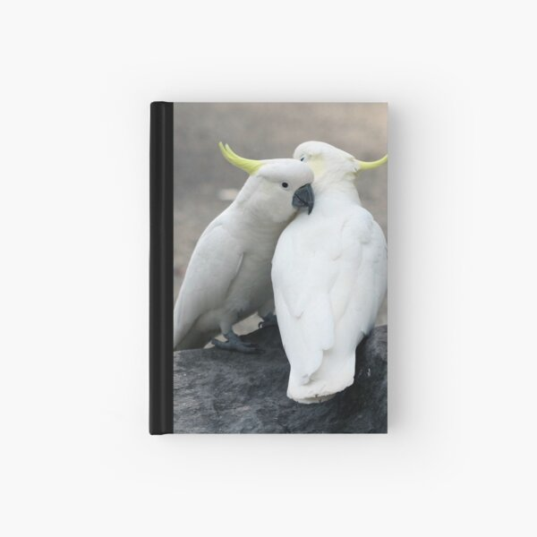 Snuggles Hardcover Journal