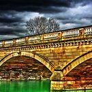 Bridge by Dane Walker