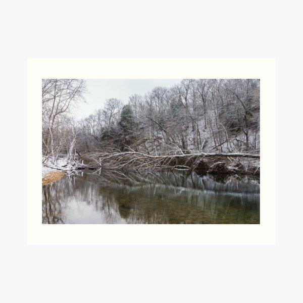Fallen Reflections At Finley Art Print