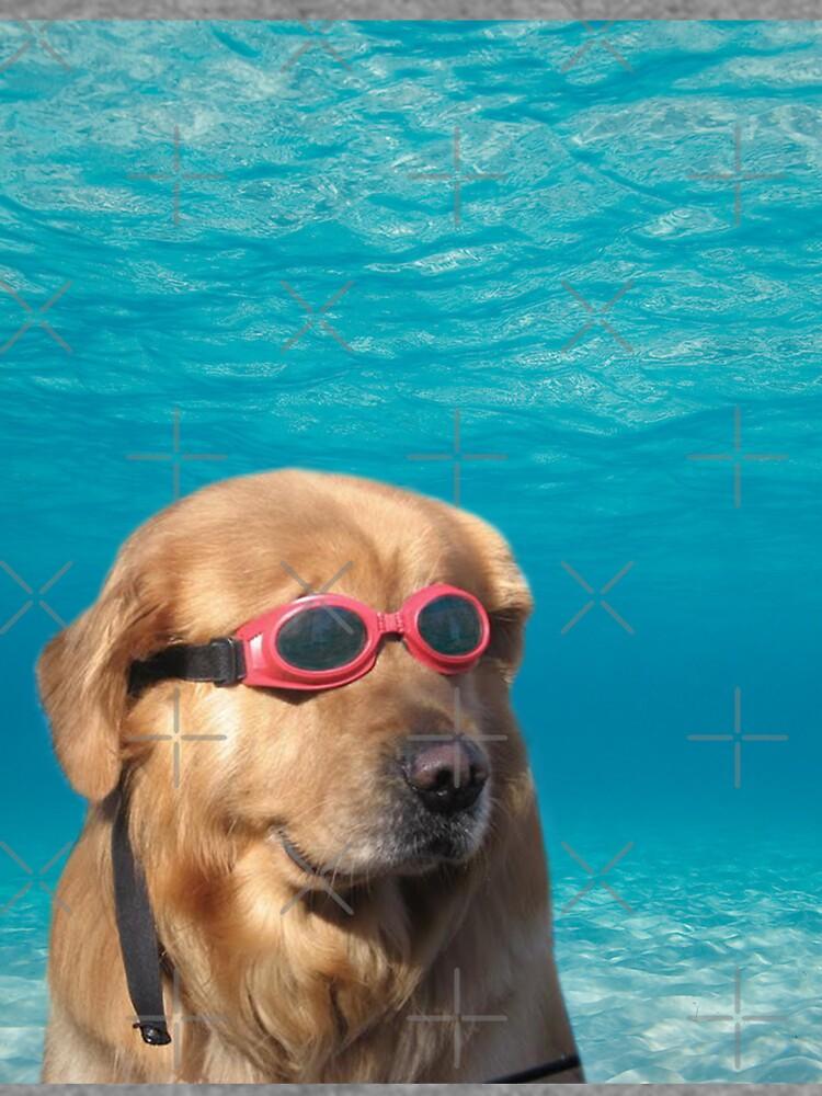 Swimmer Dog by Elisecv