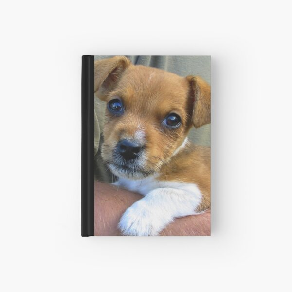 Puppy Love Hardcover Journal