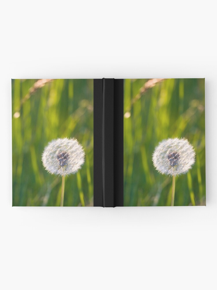 Alternate view of The lone dandelion Hardcover Journal
